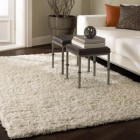 hand tufted rug